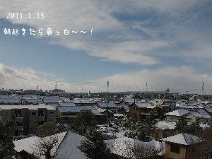 2011115w.jpg